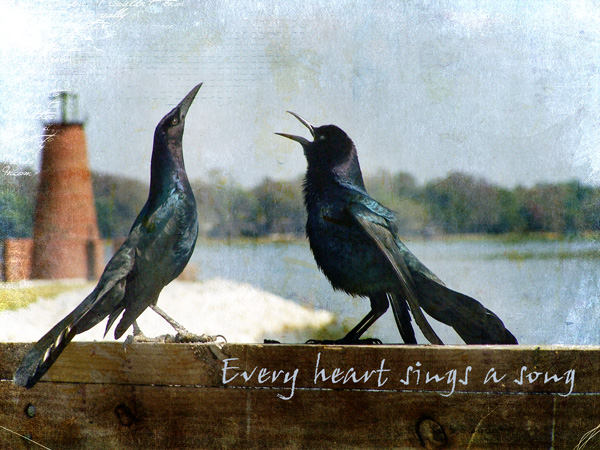EveryHeartSings
